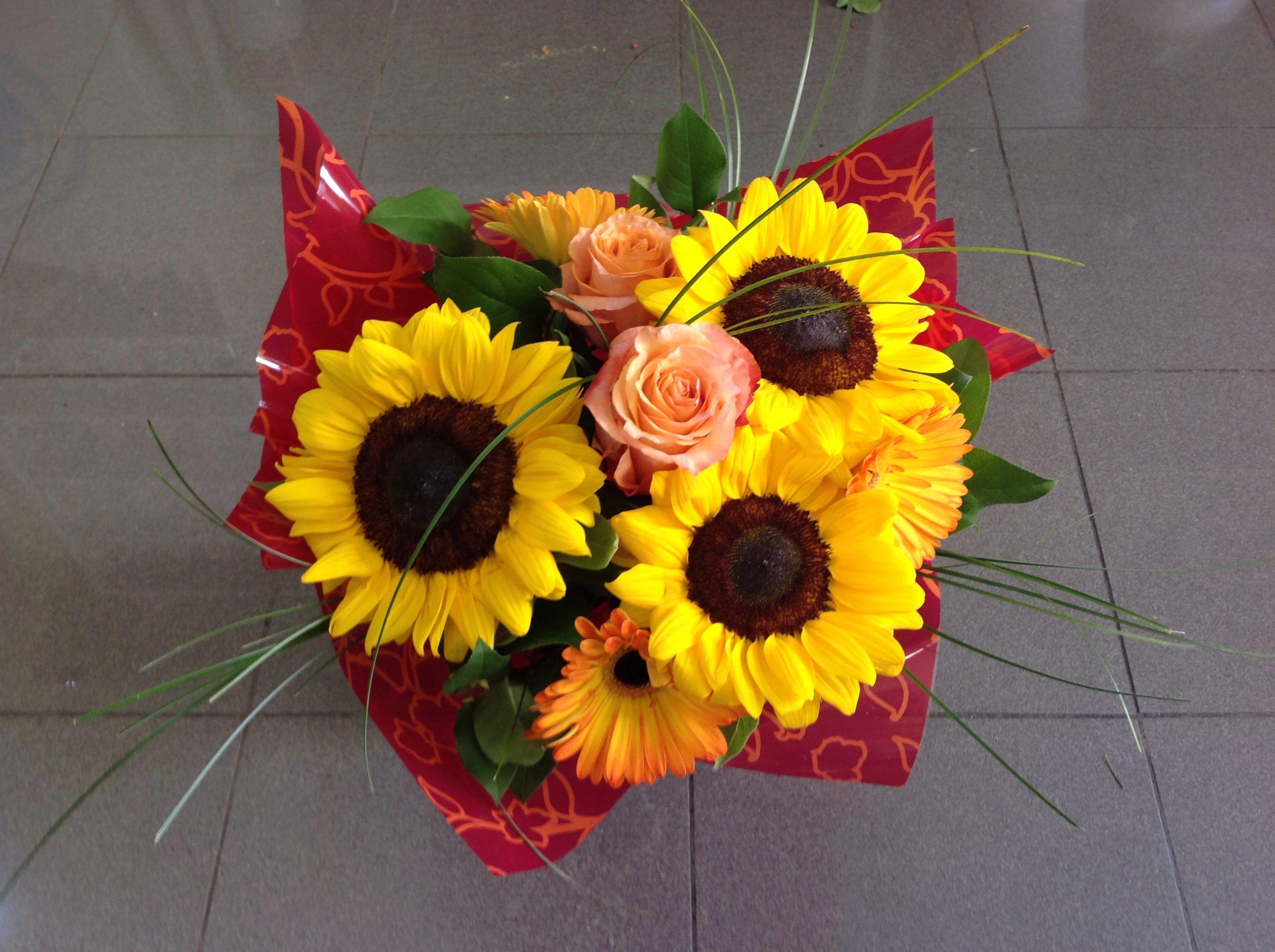 Vendita fiori e piante online a Bolzano
